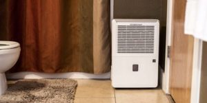 Best Dehumidifier for Basement of 2017
