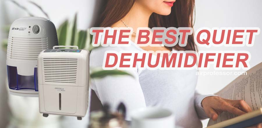 Best Quiet Dehumidifier – Reviews And Buying Guide