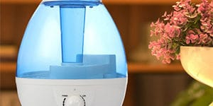 Top 10 Best Humidifier Reviews And Buying Guide