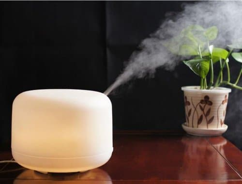Best Humidifier reviews